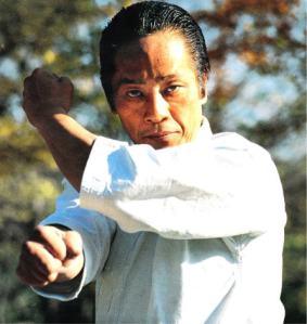 Asai Sensei Jitsugi 1