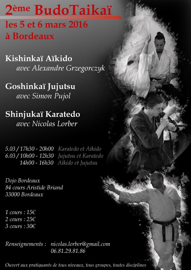 affiche 2e Budotaikai