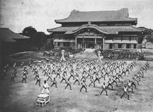 Karate-ShuriCastle