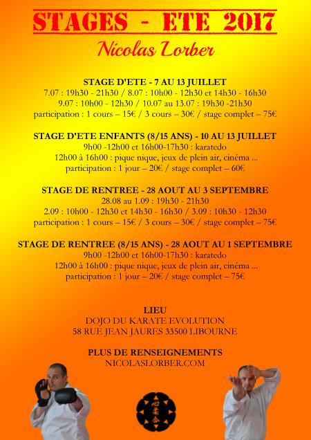 affiche-stage-dete-rentree-2017