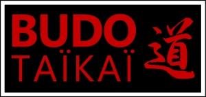 logo budotaikai