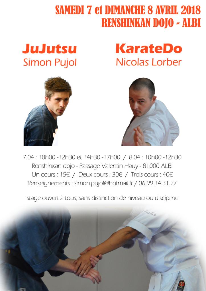 Jujutsu Karatedo Avril18 Albi