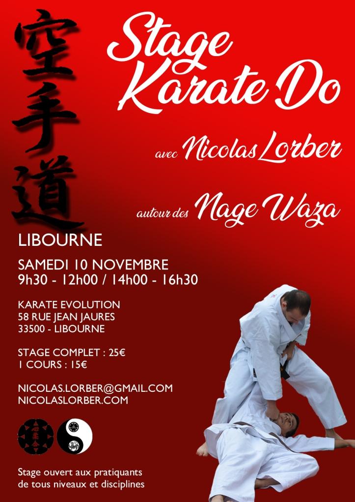 Stage Nage N.Lorber Sam10nov2018